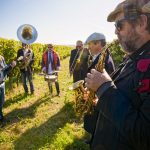 Musicians playing during the harvest of the best organic grape