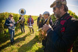 French organic wine La Joly