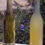 Defining the Differences Between Organic, Biodynamic and Natural Wines