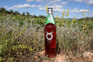 Tarantas Bobal Rose-health benefits of wine