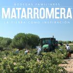 Spanish Organic Wine Harvest 2017