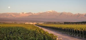 Snowmelt irrigation for Chakana Winery, Argentina
