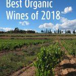 Best Organic Wines of Year [2020 Update]