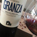 90 Point Organic Spanish Wine