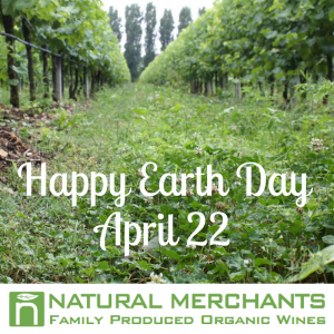 Best organic wines for Earth Day