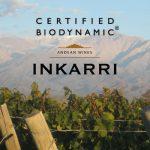 Biodynamic Wines Spotlight: Inkarri