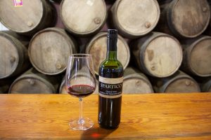 organic wines Spartico