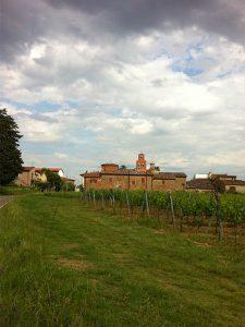 Italian organic wine Romignano