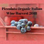 Organic Italian Wine Harvest 2018
