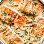 organic wine & food pairings salmon