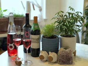 organic wine influencer Kaity Welch