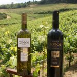 New Organic Greek Wine Blends